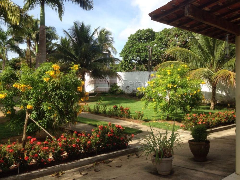 Comprar Rurais / Chácaras em Satuba apenas R$ 230.000,00 - Foto 3