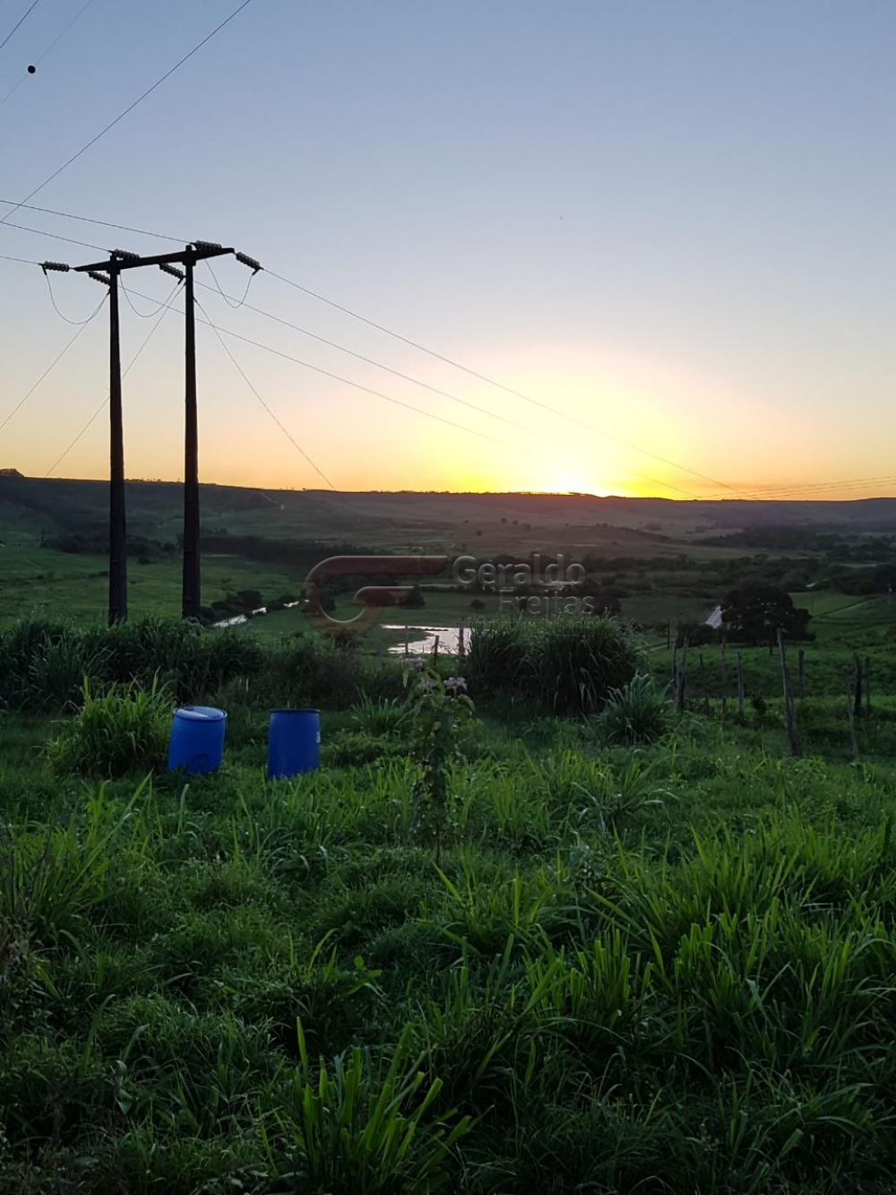 Rurais / Fazendas em São Miguel dos Campos , Comprar por R$1.200.000,00