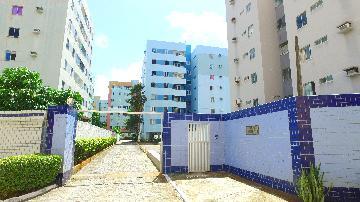 Maceio Mangabeiras Apartamento Locacao R$ 1.200,00 3 Dormitorios 1 Vaga Area construida 72.00m2